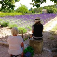 Watercolor, oil and acrylic workshop in Provence, with artist Kirah Van Sickle