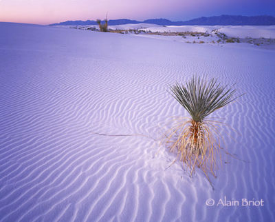 alain-White-Sands-Sunrise_1