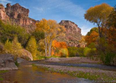 Aravaipa Canyon