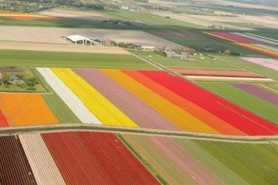 photoquest-Netherlands