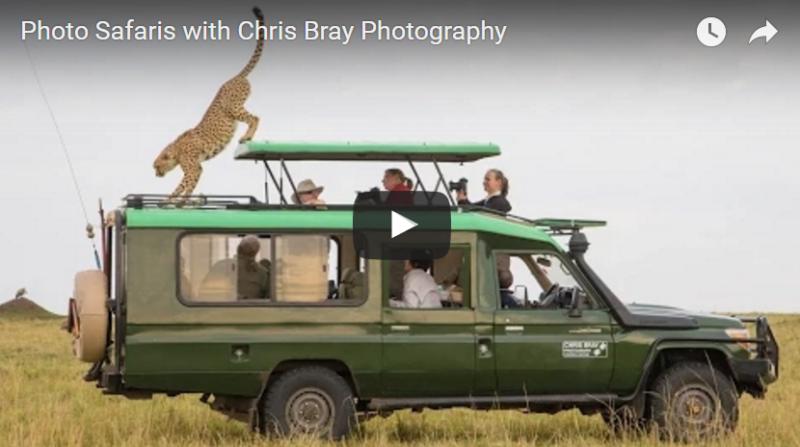 Chris Bray Photography