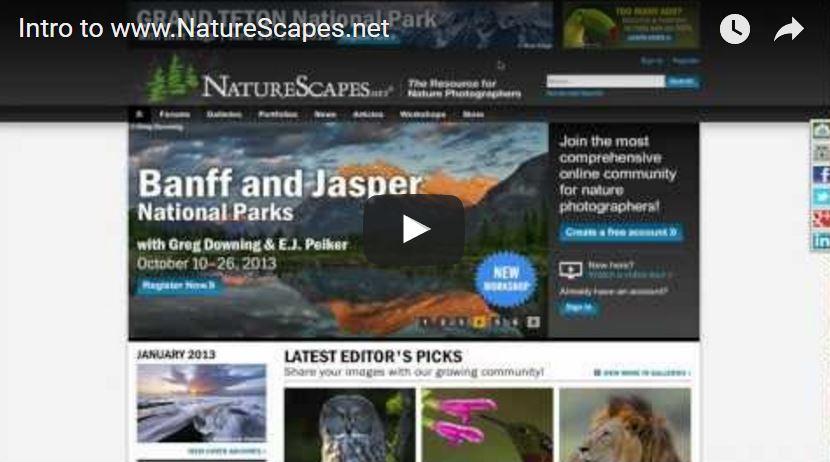 NatureScapes.net