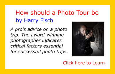 Tips-from-the-Pros-Harry-Fisch