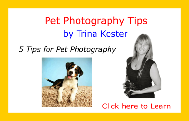 Tips-from-the-Pros-Trina Koster