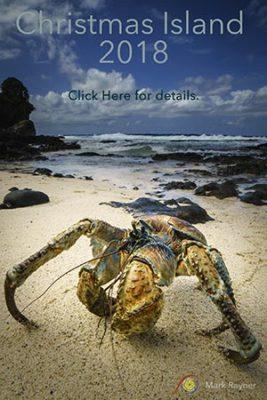 Christmas Island 2018