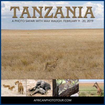 2019 Tanzania Photo Safari with Max Waugh