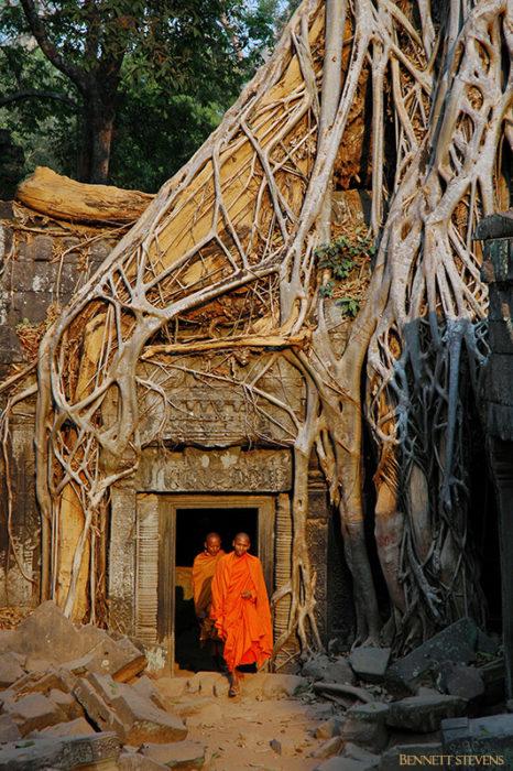 Monks at Ta Prohm, Angkor wat Cambodia