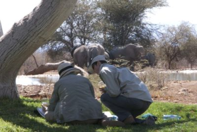 Alison Nicholls African Art Safaris