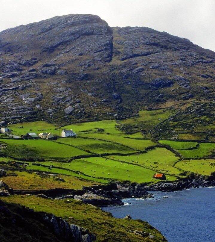 Evelyn Dunphy-Ireland