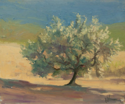 Olive tree study by Vicki Norman