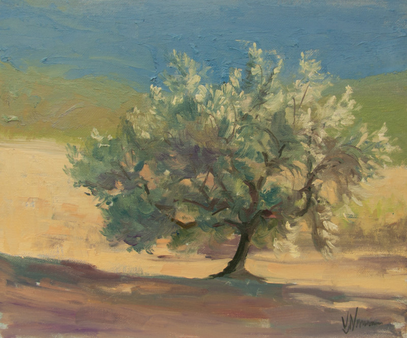 Olive tree study by Vicki Norman