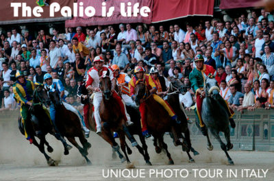The Palio is life_cover web