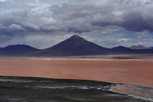 Laguna Colorada with Pabellon Volcano on the backgroud