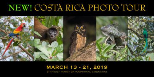 2019 Costa Rica photo tour